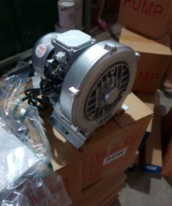 máy thổi khí con sò veratti loại 90w - 200w